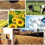 На Чортківщині 45% вакансій – у сільськогосподарській сфері
